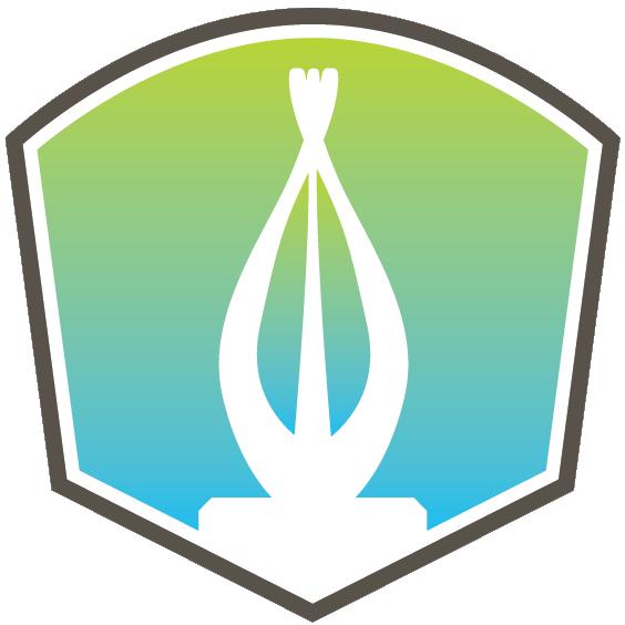 Solar Service Award Icon